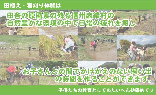 taiken_2.jpg